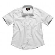 SH64350 Short Sleeve Dickies Ladies Shirt
