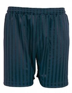 Maddins Shadow Stripe P.E Shorts