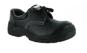 SW2003 Economy Safety Shoe